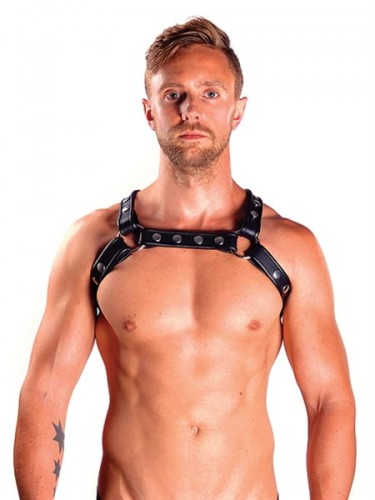 Mister B Uprząż X-Back Harness l/xl